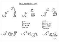 Our Amazing Dog