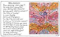 brain-plasticity