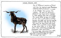 corkscrew-goat-w